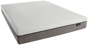 "BeautyrestMemory Foam ST Mattress-In-A-Box 10"" Profile"